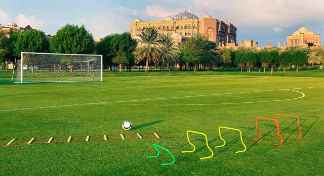 FIFA-Soccer-Pitch